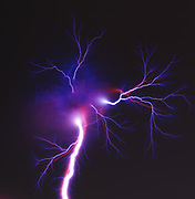 An electrical spark created when a sheet pf photographic film is placed between two high voltage electrodes. Initially, the film builds up a charge on the surface and acts like as a capacitor. At a certain potential voltage the film, which is a dielectric material, breaks down and allows electrons to flow. The flowing electrons superheat the air resulting in an electrical spark which is recorded in the film emulsion. These are often called Lichtenberg Figures after the German physicist Georg Christoph Lichtenberg, who originally discovered and studied them.