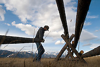 NEWS&GUIDE PHOTO / BRADLY J. BONER.A man who identified himself as Ted Nugent moves logs into place while constructing a buckrail fence Tuesday in Spring Gulch. The top rail of every sixteenth section of the fence will be removed in the winter to allow wildlife to move more freely.