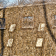 In this section of the Hay Barn at Duke Farms, Hillsborough, NJ, the setting sun creates some beautiful shadows on the wall.  To me there is also a series of overlapping faces in the wall.  Take a close look if you don't see it right away.