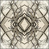 "4"" x 4"" Print. Archival inks on 100% cotton art paper."