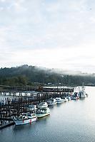Gillnet fishing for salmon, Youngs Bay, Astoria, Oregon.
