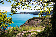 Views through the trees and across the coastline of green cliffs, hills and headland on the north coast of Jersey, CI