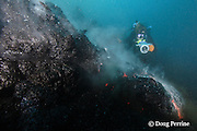 "shimmering heat waves rising off erupting pillow lava <br /> distort the image of videographer Shane Turpin, filming underwater eruption at Kilauea Volcano, Hawaii Island ("" the Big Island ""), Hawaii, U.S.A. ( Central Pacific Ocean ) <br /> MR 352"