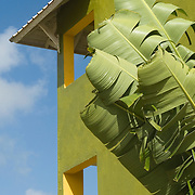 Resort hotel and palm leaves at Grand Paradise Hotel in Punta Cana