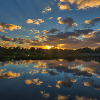 South Florida sunrise photography from nature photographer Juergen Roth showing the waterscape of Wakodahatchee Wetlands in magical sunrise light. Wako is an amazing nature area for viewing and photographing birds and other wildlife in Florida. <br /> <br /> Florida sunrise photography images are available as museum quality photo prints, canvas prints, wood prints, acrylic prints or metal prints. Fine art prints may be framed and matted to the individual liking and interior design room project needs:<br /> <br /> https://juergen-roth.pixels.com/featured/wakodahatcheen-wetlands-sunrise-magic-juergen-roth.html<br /> <br /> All Florida nature photography images are available for photography image licensing at www.RothGalleries.com. Please contact me direct with any questions or request.<br /> <br /> Good light and happy photo making!<br /> <br /> My best,<br /> <br /> Juergen<br /> Prints: http://www.rothgalleries.com<br /> Photo Blog: http://whereintheworldisjuergen.blogspot.com<br /> Instagram: https://www.instagram.com/rothgalleries<br /> Twitter: https://twitter.com/naturefineart<br /> Facebook: https://www.facebook.com/naturefineart