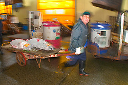 frozen tunas, Thunnus sp., on cart, being transported to intermediate buyer's wholesale shop to be processed immediately after auction, Tsukiji Fish Market or Tokyo Metropolitan Central Wholesale Market, the world's largest fish market, hadling over 2, 500 tons and over 400 different kind of fresh sea food per day