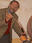 Juan Luis Bouza, owner, taking a barrel sample with a pipette in the barrel aging cellar. Bodega Bouza Winery, Canelones, Montevideo, Uruguay, South America