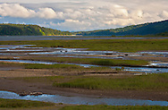 A stream flows through marshy tidal flats at the head of Quilcene Bay, part of Dabob Bay on Hood Canal of Puget Sound, Washington state, USA