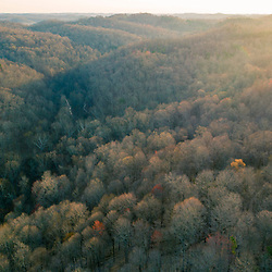 The hills and forests of the Hughes River Wildlife Management Area near Walker, West Virginia. Spring.