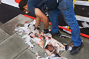 A workman clears away old shop fittings and then some discarded sexist ad posters that lie on a London street after being removed from a refurbished shop construction site. Yellow steps ladders, the red exterior of the shop make for prime colours alongside the torn and water soaked posters, the faces and nude bodies of the women showing before being swept away.