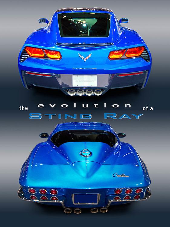 Blue Corvette StingRays