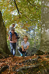 Father and sons in forest, Bavaria, Germany