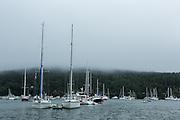 Northeast Harbor, ME - 13 August 2014. Northeast Harbor in the fog.