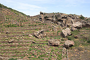 The heroic vineyards of Pantelleria are comprised of dry-stone wall terraces that cover much of the hillsides.