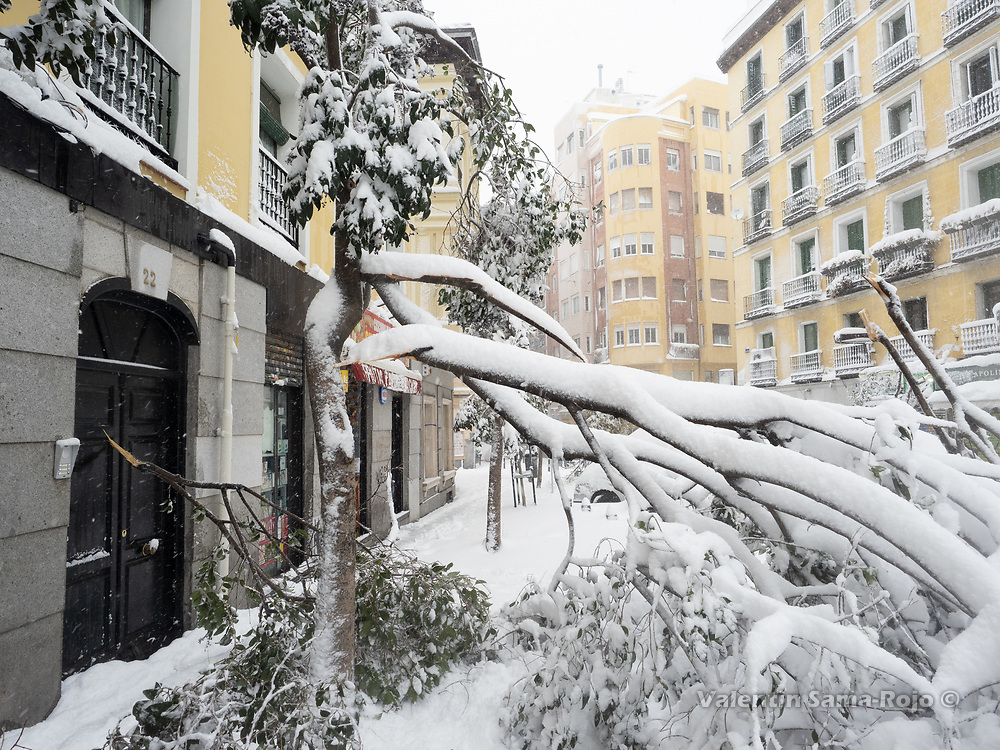 Madrid, Spain. 9 th January, 2021. The broken branch of a tree blocking the entrance to a building. Storm Filomena hits Madrid (Spain), a weather alert was issued for cold temperatures and heavy snow storms across Spain; according to the weather agency Aemet is expected to be one of the snowiest days in recent years. © Valentin Sama-Rojo.