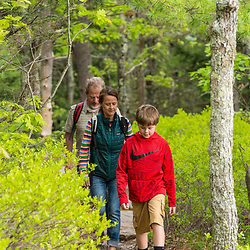 A couple and their son hike the Blueberry Ledge Trail near the summit of Mount Agamenticus in York, Maine.