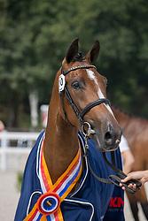 010, Mette VDL<br /> Nationaal Kampioenschap KWPN<br /> 3 jarige springmerries<br /> © Hippo Foto - Dirk Caremans<br />  15/08/2020