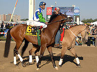 Barbaro and Jockey Edgar Prado