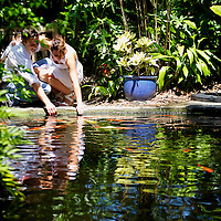 Deanna & Daniel engagement session @ Marie Selby Botanical Gardens