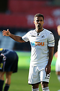 Wayne Routledge of Swansea city looks on. Swansea city v Sampdoria , pre-season friendly at the Liberty Stadium in Swansea, South Wales on Saturday August 5th 2017.<br /> pic by Andrew Orchard, Andrew Orchard sports photography.
