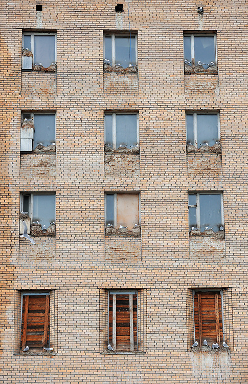 Birds nest in windows of a building in the Russian coal mine city Pyramiden, Svalbard, Norway