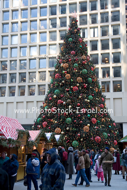 Chicago Illinois USA, Large Christmas Tree in downtown, December 2007