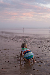 Rear view of a small child searching seashell on the beach, Lit-et-Mixe, France