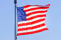 Tattered American flag blowing in the wind