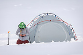 Alaska - Ridge Merino