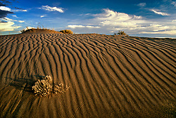 Sand patterns formed by wind at Zapata Ranch, CO