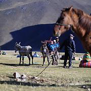 Guides load donkeys at the Cuyoc campsite at the Cordillera Huayhuash trekking circuit, Peru, September 3, 2018. REUTERS/Lisi Niesner