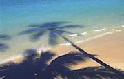 Palm shadow on beach<br />