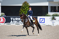 Cornelissen Adelinde (NED) - Zephyr<br /> Preis der VUV-Aachen<br /> Weltfest des Pferdesports CHIO Aachen 2014<br /> © Hippo Foto - Leanjo de Koster