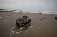 April 9, 2015, Almost five years after the BP oil spill,  One of many tar balls washed up on the beach on Elmer's Island, LA.