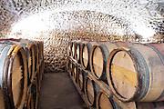 barrel aging cellar chateau curson dom pochon crozes hermitage rhone france