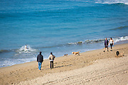 Locals Walking Along the Shoreline of Huntington Beach