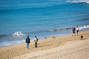 Locals Walking Along the Shoreline of Huntington Beach