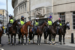 © Licensed to London News Pictures. 03/08/2019. London, UK. Police on horseback during the Free Tommy Robinson Protest in central London. Last month Stephen Yaxley-Lennon, known as Tommy Robinson was given a nine-month prison sentence at Old Bailey after he was found guilty of contempt of court.. Photo credit: Dinendra Haria/LNP