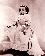 Pauline Munsters at 23 inches tall, recognized by the Guinness Book of Records as the shortest woman ever recorded. Born: February 26, 1876, Ossendrecht, Netherlands died: March 1, 1895, New York City, New York, United States. Also known as Princess Pauline