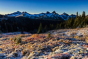 Some fall color is visible through a light dusting of snow on a hillside that looks out to the Tatoosh Range in Mount Rainier National Park, Washington.