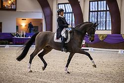 Kronberg, Gestüt Schafhof, KRONBERG _ Int. Festhallen Reitturnier Schafhof Edition 2020<br /> <br /> RUEBEN Sabine (GER), Django 358<br /> Louisdor-Preis - Finale 2020 <br /> Nachwuchspferde Grand Prix für 8 - 10j. Pferde / Einlaufprüfung <br /> Kurz Grand Prix<br /> Dressurprüfung Kl.S***<br /> <br /> 19. December 2020<br /> © www.sportfotos-lafrentz.de/Stefan Lafrentz
