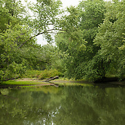 Late summer on the Ipswich River in Topsfield, Massachusetts