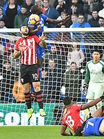Football - 2018 / 2019 Premier League - Cardiff City vs. Southampton<br /> <br /> Lee Peltier Cardiff City fouls Charlie Austin Southampton, at Cardiff City Stadium.<br /> <br /> COLORSPORT/WINSTON BYNORTH