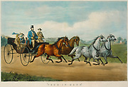 Four-in-Hand, Hand-colored lithograph, 1861