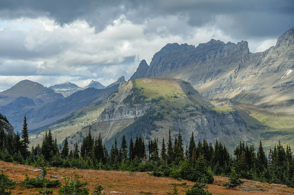 A view from Hidden Lake Trail towards the Garden Wall at Logan Pass, Glacier National Park, Montana, Tuesday, October 7, 2014. According to Dan Fagre Ph.D. of the USGS clumps of sub-alpine fir have gotten thicker and taller in this area due to warming temperatures and changes in snow melt.