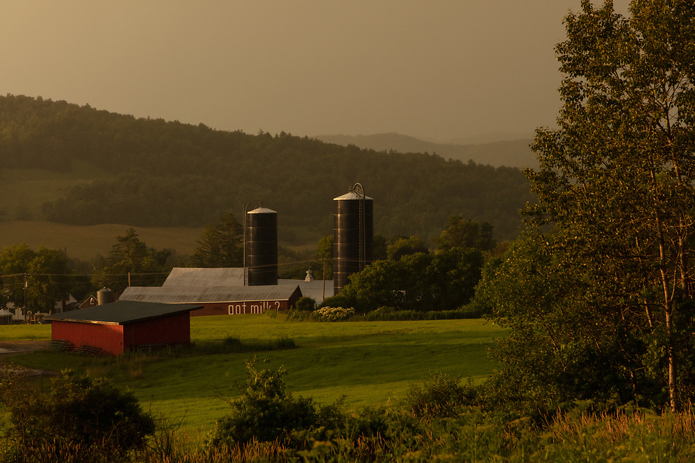 Afternoon light shining upon the fields of Glendale Farm after a summer rainstorm.