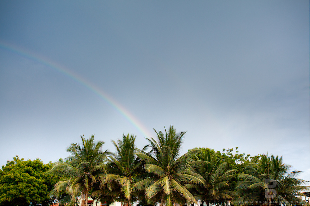 Palm trees and a rainbow in Puerto Lopez, Ecuador.