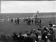 """30/06/1962 <br /> 06/30/1962<br /> 30 June 1962<br /> Irish Sweeps Derby at the Curragh Racecourse, Co. Kildare. Leading in the winner of the Derby """"Tambourine II"""", owned by Mrs Howell E. Jackson and trained by E. Pollet."""