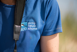 Project Officer Emma Witcutt, Little tern Sternula albifrons monitoring site, part of an EU Life Project to protect this species, Winterton-on-Sea, Norfolk, July