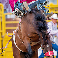070513       Cable Hoover<br /> <br /> Will Lowe holds tight to a bareback bronc called Touched by an Angel during the PRCA rodeo in Window Rock Friday.